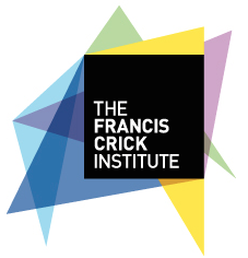 10th Chemistry and Biology of Peptides Meeting @ Francis Crick Institute | London | United Kingdom