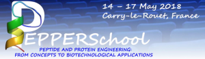 PEPPERSchool 2018 @ Carry-le-Rouet, France | Carry-le-Rouet | Provence-Alpes-Côte d'Azur | France