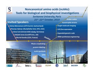 Noncanonical amino acids: Tools for biological and biophysical investigations @ Sorbonne University