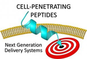 Cell-Penetrating Peptides: Next Generation Delivery Systems @ Aimé Schoenig / Montpellier University
